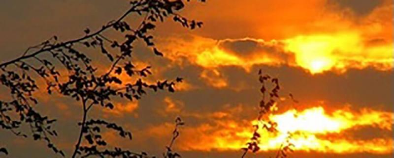 Sunset over Carrwood Park